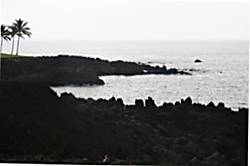 Halii Kai 15C