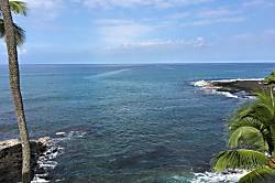 Kona Bali Kai 425