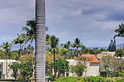 Palms at Wailea #1507