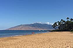 Maui Banyan H112
