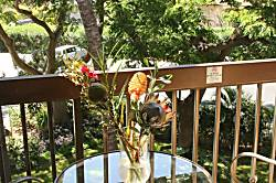 Maui Vista 2419