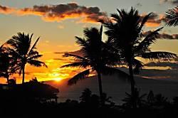 Maui Kamaole J 120
