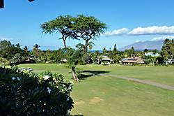 Maui Escape