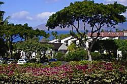 Maui Kamaole I-115