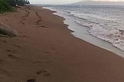 Maile's Pohailani Beach Condo