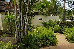 Maui Kamaole 1BR