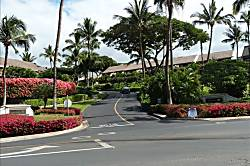 Maui Kamaole M-102