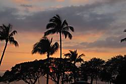 Maui Parkshore