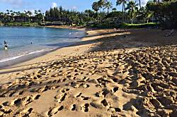 Napili Shores Resort - A206