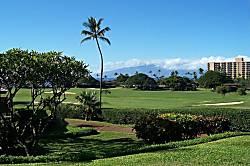 Maui Eldorado K 112