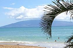 Gene's Maui Dream