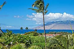 Maui Kamaole #L-202