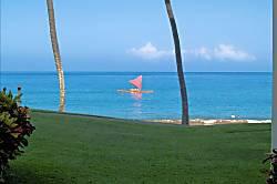 Polo Beach Club 102
