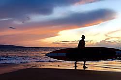 Maui Vista Rental