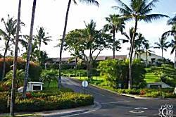 Maui Kamaole M 106