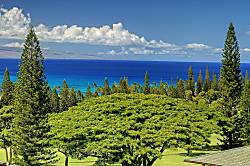 Kapalua Golf Villa 19V1 Gold Ocean View
