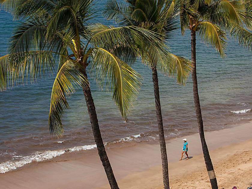 Sugar Beach Resort PH 27