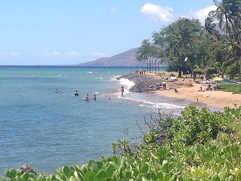 The Shores of Maui #215 1/1