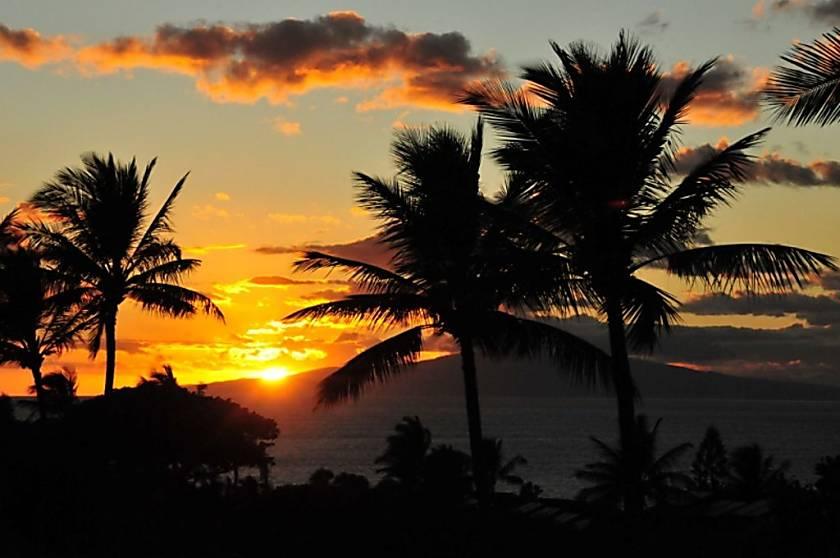 Maui Kamaole #J-120