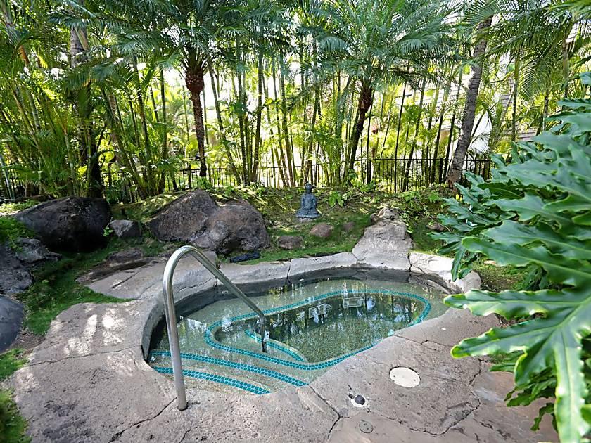 Maui Kamaole #I-215