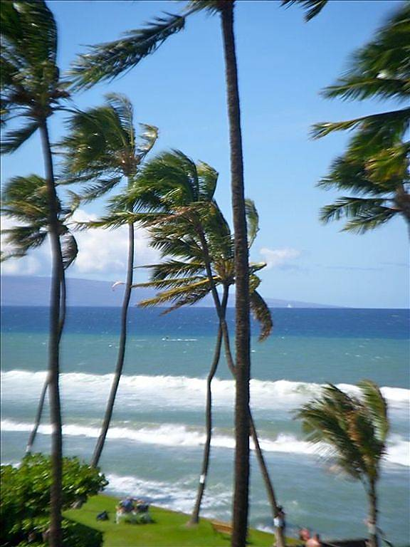 Maui's Magical B408