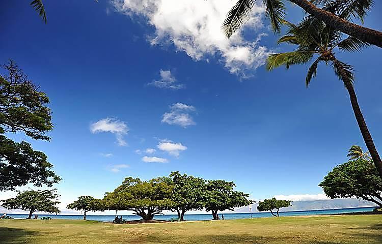 Honokowai Palms #A-7