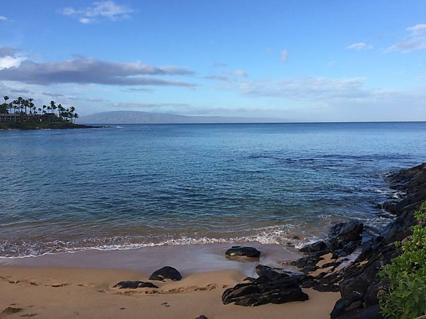 C217 Napili Shores Resort