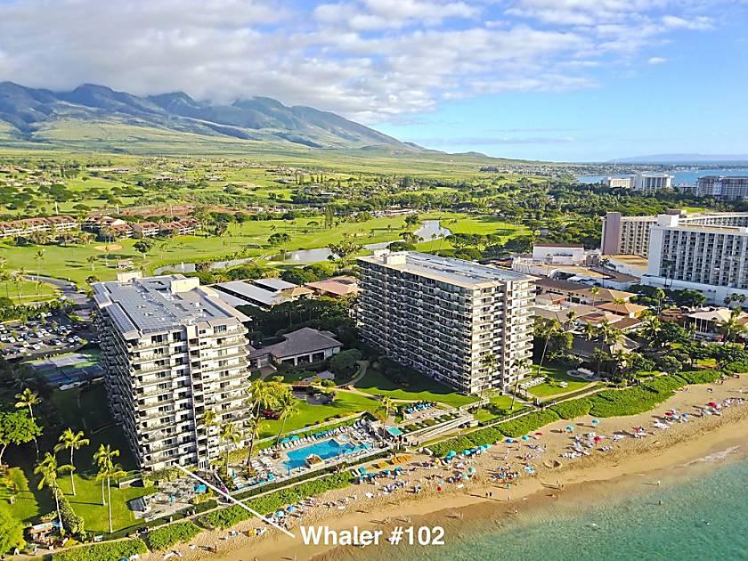 Whaler 102