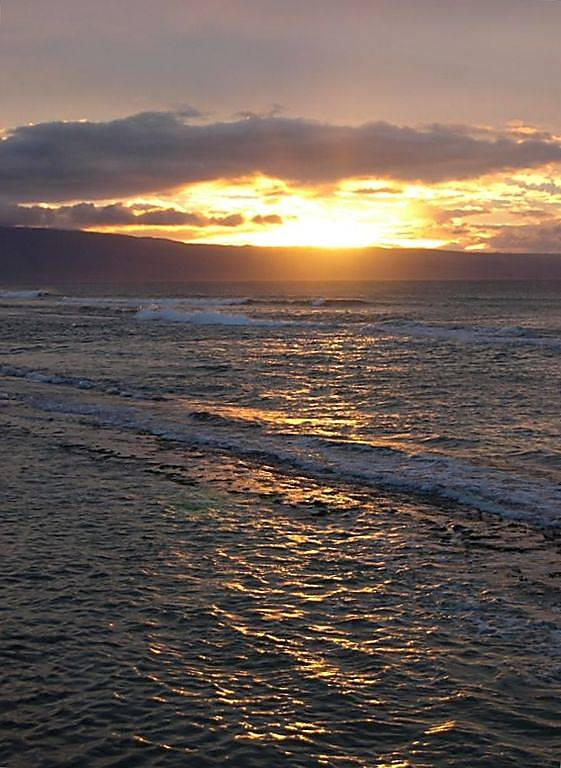 Maui Sands 717