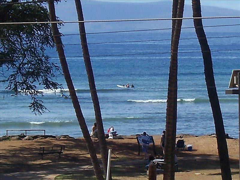 Island Surf 303