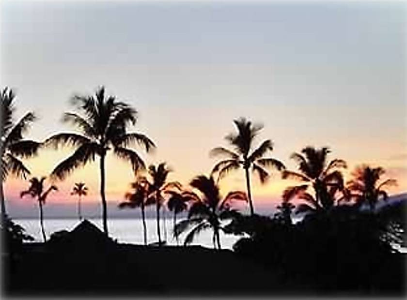 Maui Eldorado F104