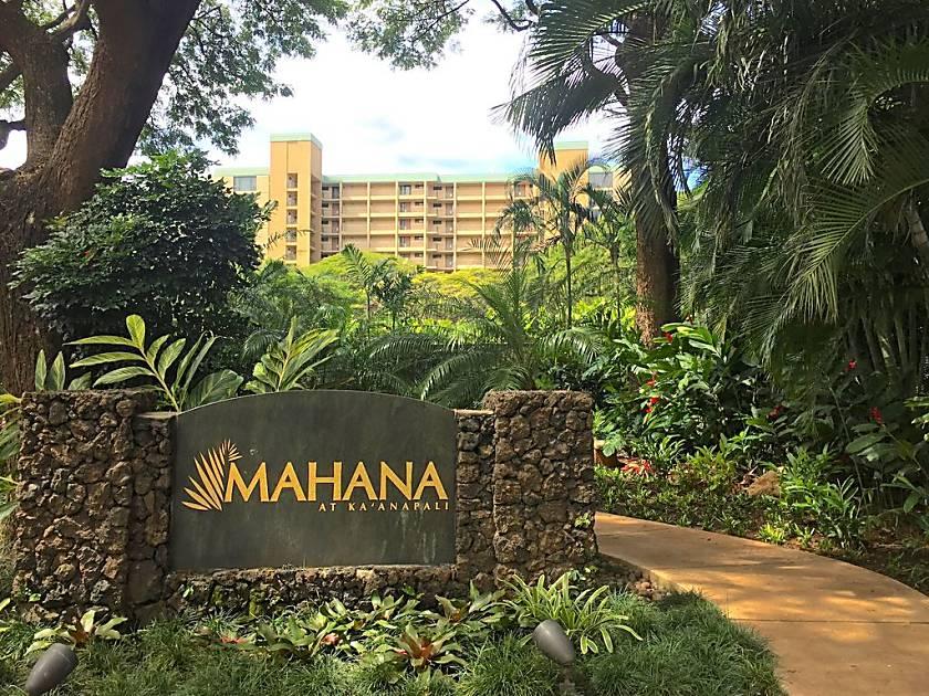 Mahana  514