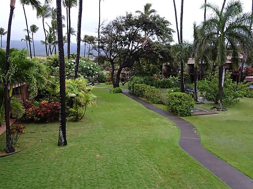 Maui Sands 4G  -  Ocean Front