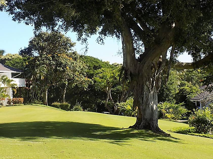 Kiahuna Plantation
