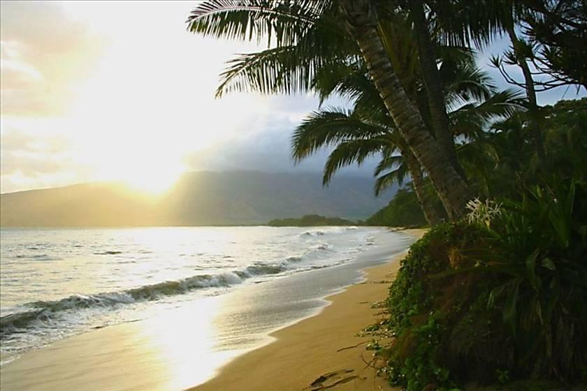 Sugar Beach 527