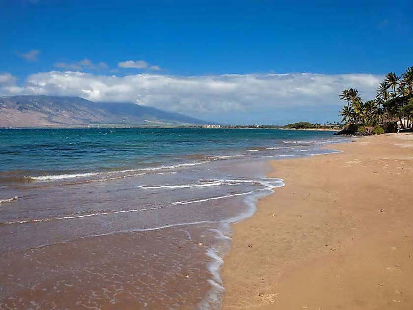 Kihei Bay Vista D209