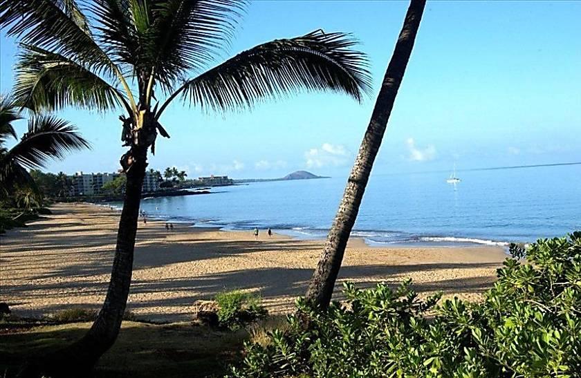 Maui Vista 2314