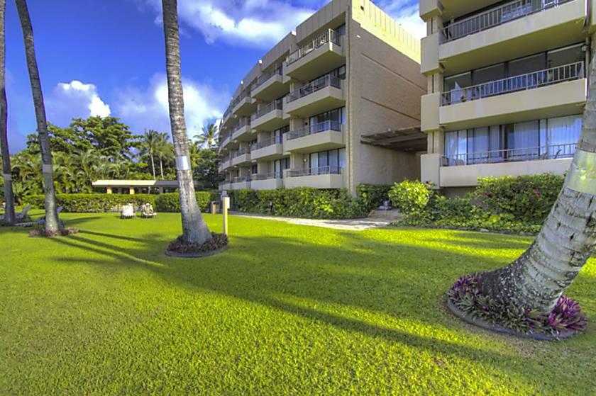 Paki Maui 426