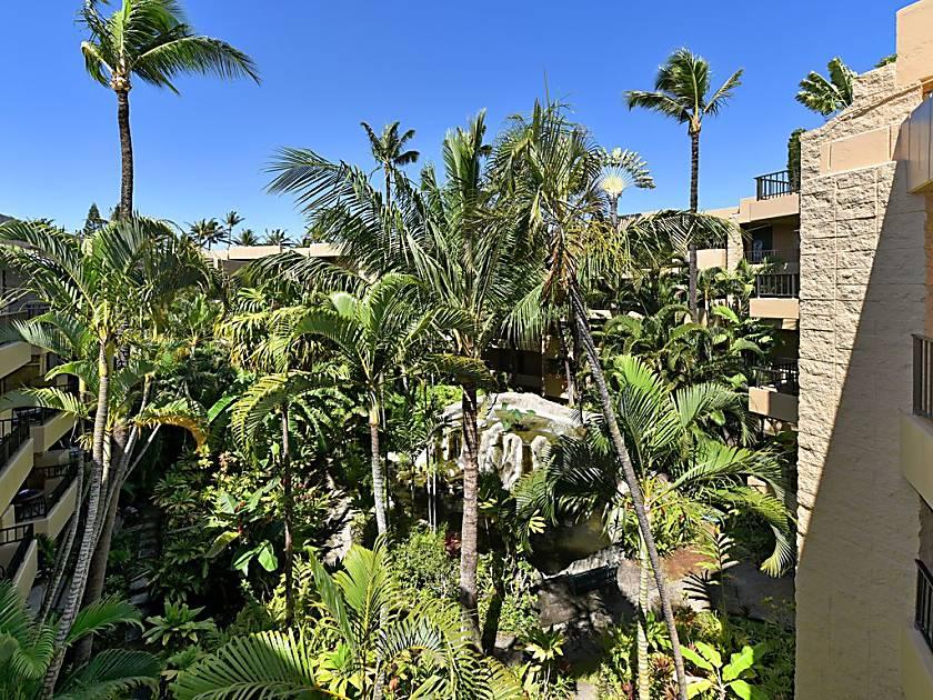 Paki Maui