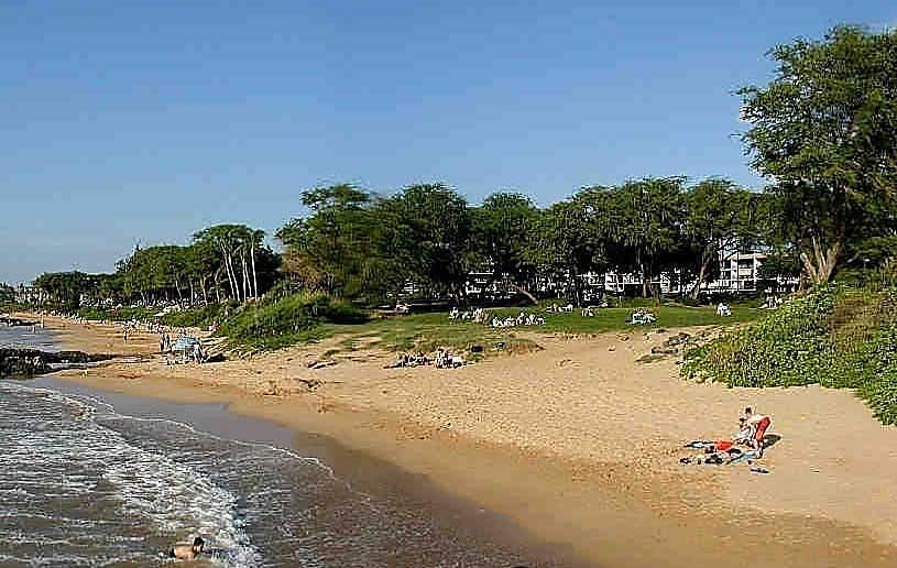 Kamaole Sands 8-107