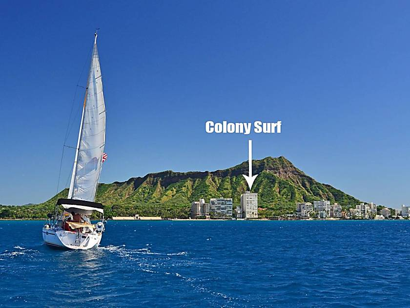 Colony Surf #807