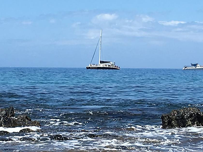 Island Surf 612