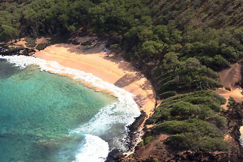 Island Surf 511