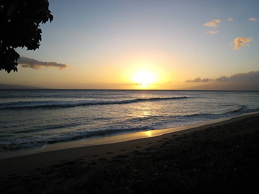 Ocean Front-Napili Shores F248