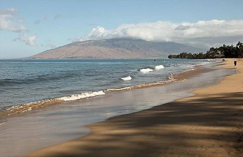 The Shores of Maui