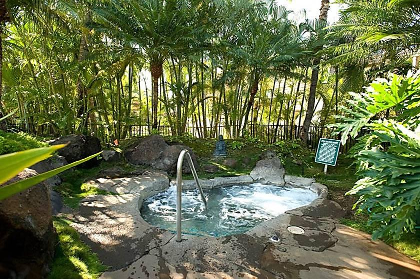 Maui Kamaole C 202