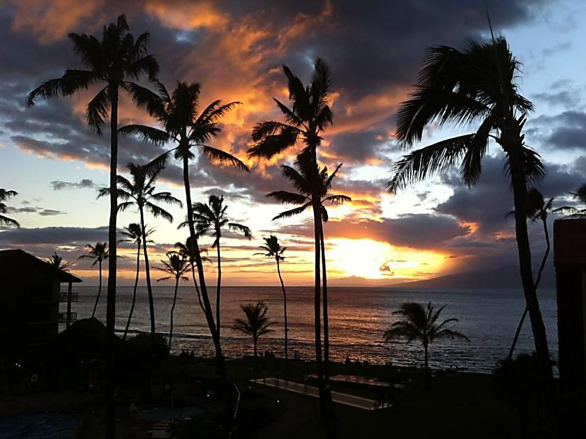 Bennett Maui Bungalow