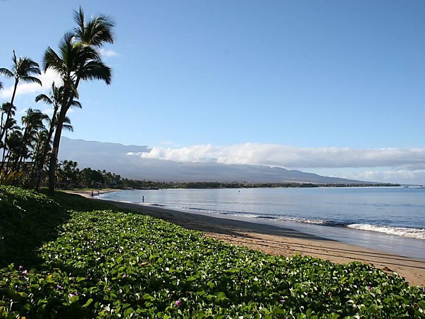 Sugar Beach Resort 329