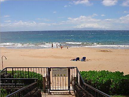 Polo Beach Club #408