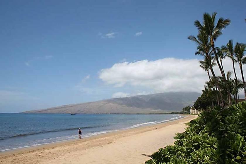 Kihei Beach Condo 402